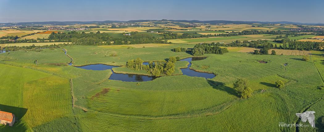 Reinheimer Teich